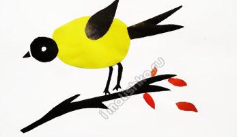 Аппликация Птицы из цветной бумаги: этапы изготовления с фото
