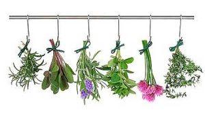 Какие применять успокаивающие травы для детей?