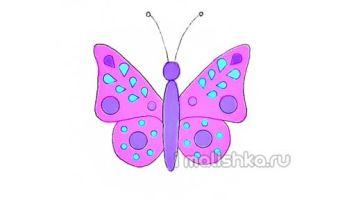 Как нарисовать бабочку: поэтапная инструкция