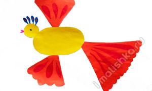 Аппликация «Сказочная птица» из цветной бумаги: поэтапная инструкция с фото