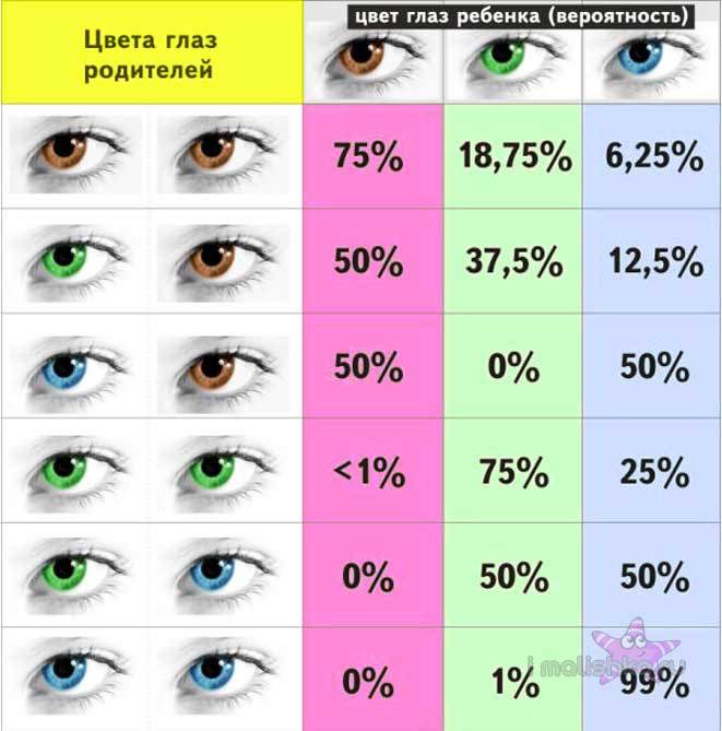 Таблица вероятности цвета глаз новорожденного