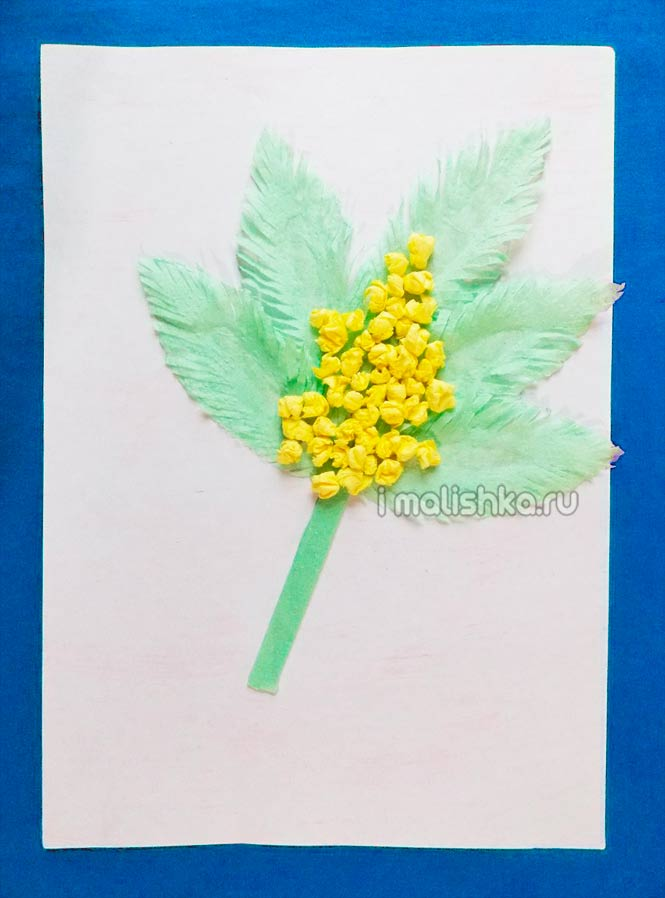 applikaciya-mimoza-iz-salfetok-6