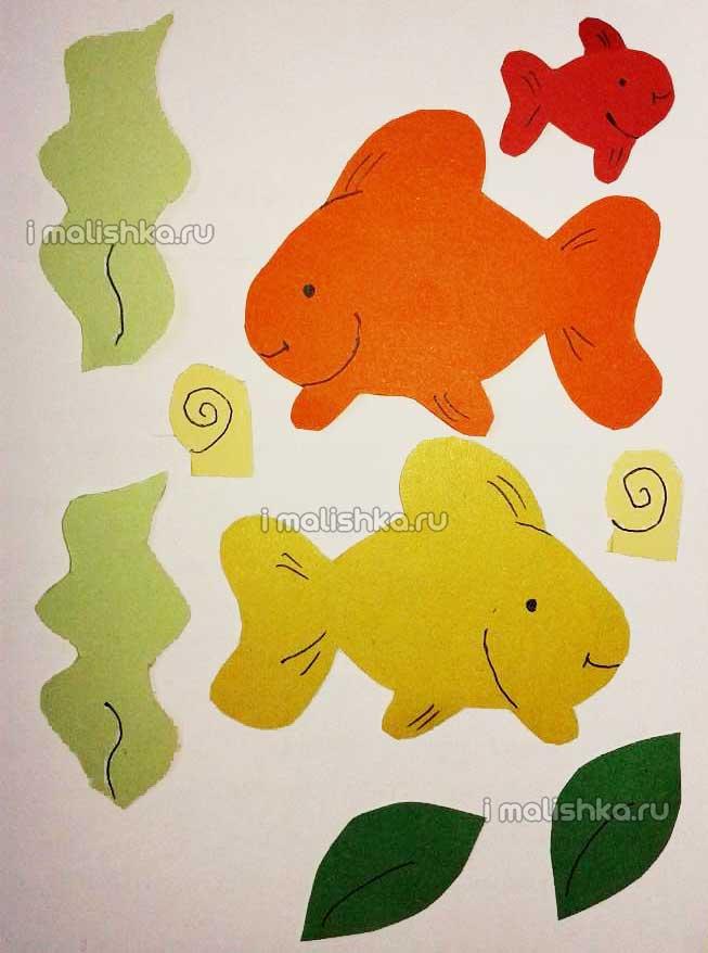 applikaciya-ribki-v-akvariume-iz-cb-4