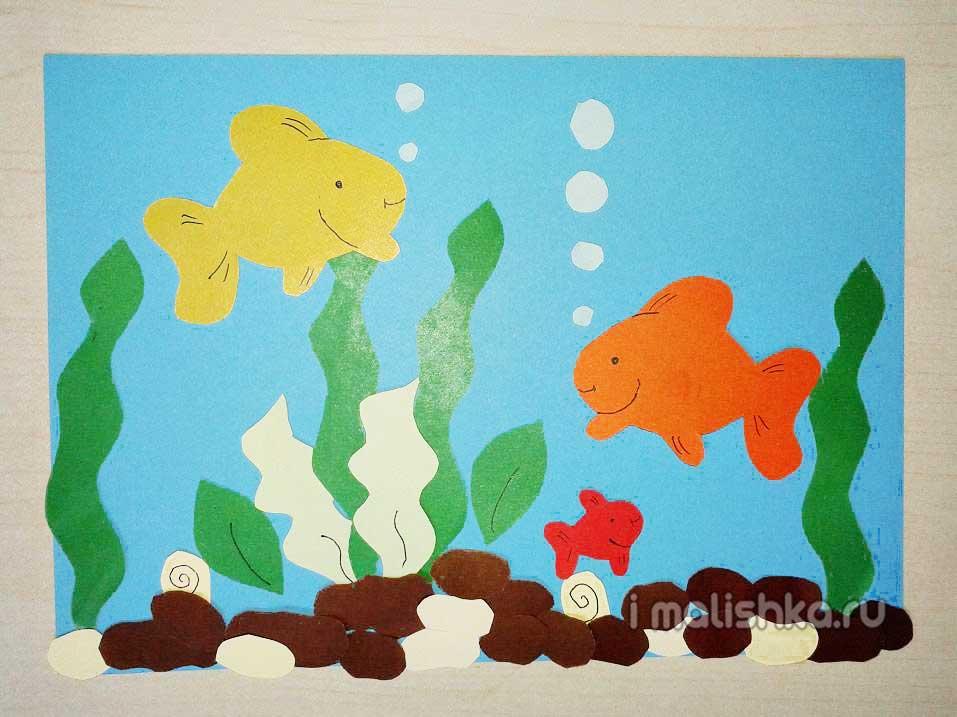 applikaciya-ribki-v-akvariume-iz-cb-6