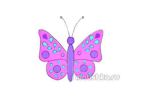 Как нарисовать бабочку: поэтапная инструкция с фото