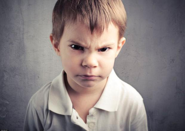 Что делать когда ребенок огрызается