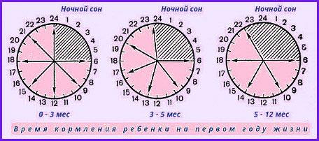 rezhim-kormleniya-novorozhdennogo-2