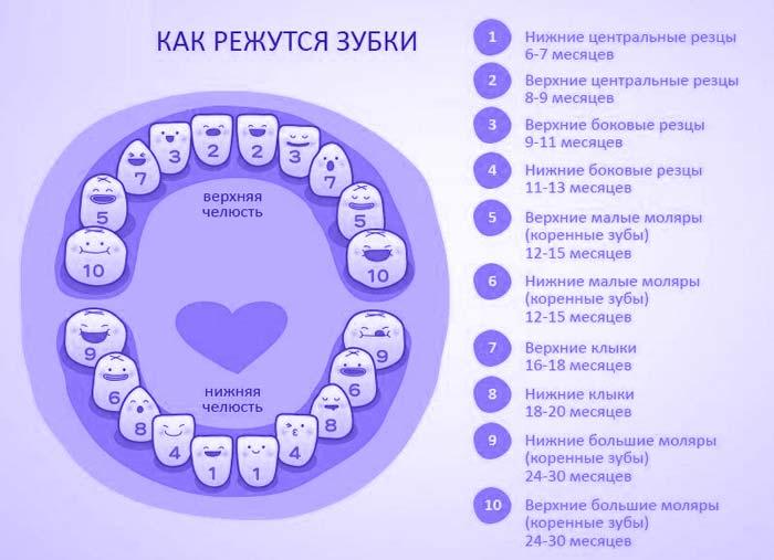 kogda-rezhutsya-zuby-u-grudnichkov-1