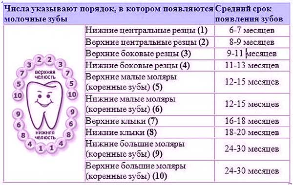 rezhutsya-zubyi-u-rebenka-temperatura-1